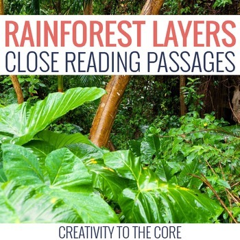 Close Reading: Rainforest Layers