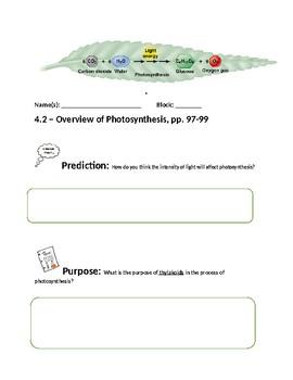 Close Reading - Photosynthesis
