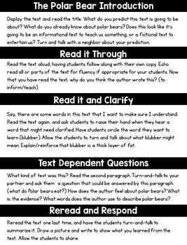 Close Reading Polar Bears