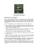 Close Reading (Prose Fiction) Student Edition