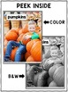 Close Reading Pumpkin Activities