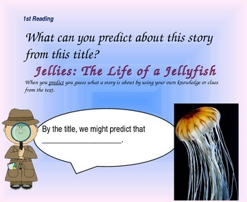 Close Reading Questioning Slides for Jellies: The Life of a Jellyfish