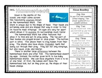 Close Reading Quickie Freebie - Shark Passage
