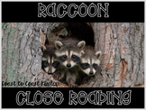Raccoon ~ Nonfiction CLOSE Reading