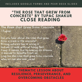 Close Reading-Resilience & Perseverance Lesson-The Rose That Grew From Concrete