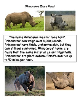 Close Reading ~ Rhinoceros: Expository Text