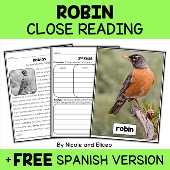 Robin Close Reading Passage Activities