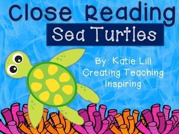 Close Reading -- Sea Turtles