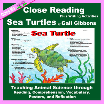 Close Reading: Sea Turtles by Gail Gibbons