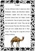Close Reading, Sentence construction ,Wild Animals, EAL/ES