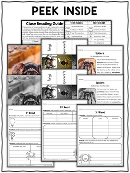 Close Reading Passage - Spider Activities