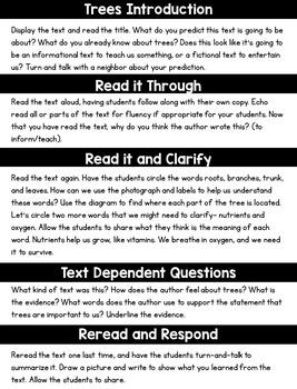 Close Reading Trees