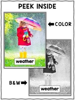 Close Reading Passage - Weather Activities