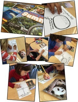 FREE! Close Reading and Writing with Photos