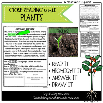 Close Reading { plants }
