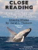 Close Reading with Amazing Whales by Sarah L. Thompson!