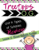 Closed Syllable Review: Orton Gillingham Lesson