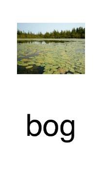 Closed syllable o Go Fish Game