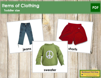 Clothing Cards  - Toddler