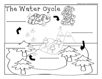 Clouds and the Water Cycle (2 Charts and a Cloud Viewer)