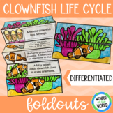 Clownfish life cycle science foldouts