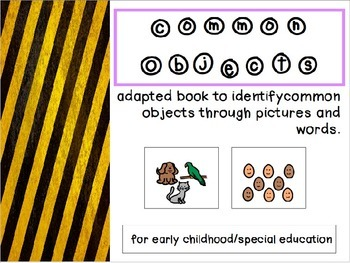 Common Objects Set Two - Adapted Book/File Folder