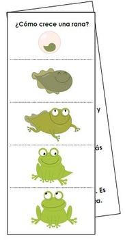¿Cómo crece una rana? Flipbooks - Same flipbook: Multiple Versions