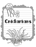 Cnidarians. Research Template Packet. Apologia Zoology 2. Lesson 12