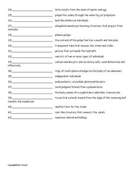 Cnidarians Vocab. Quiz or Worksheet for Invertebrate Biology