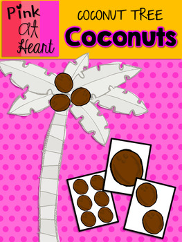 Coconut Tree: Coconuts