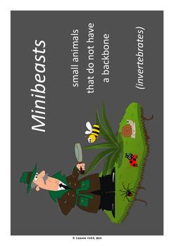 Minibeasts - Code Breaking Fun