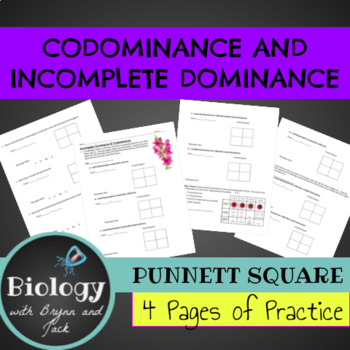 Codominance and Incomplete Dominance Punnet Square Practice