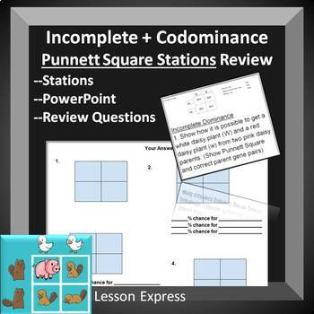 Codominance and Incomplete Dominance Review Stations -- students self check
