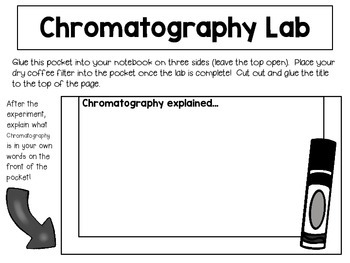 Coffee Filter Chromatography for Interactive Notebooks ~ Dollar Store Science