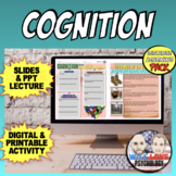 Cognition in Psychology Bundle