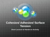 Cohesion, Adhesion, and Surface Tension w/ Hands-On Activity