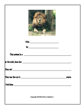 Writing Informative Paragraphs about Lions