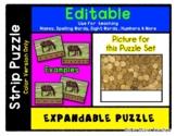 Coins Money Gold - Expandable & Editable Strip Puzzle w/ M