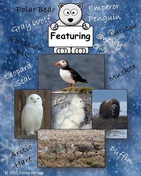 Cold Climate Animals HAM (hibernation, adaptation, or migration) Game