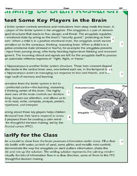 Cold Read-How Our Brains Work
