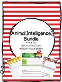 Collection 2 Bundle - Animal Intelligence