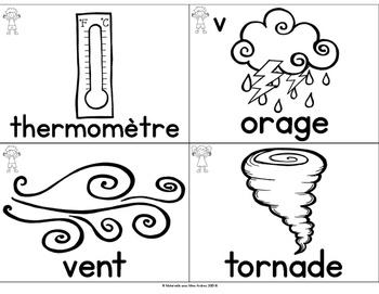 FRENCH Vocabulary Cards - Seasons / Weather (Cartes de vocabulaire - la météo)