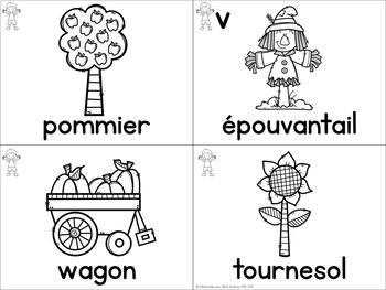 FRENCH Autumn Vocabulary Cards (Cartes de vocabulaire - automne)