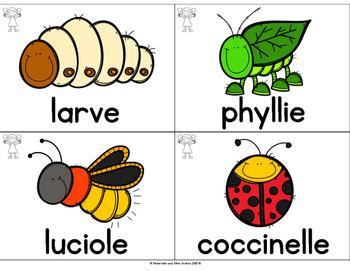 Collection Mur de mots - Les insectes et les bestioles