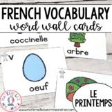 FRENCH Spring Vocabulary Cards (Cartes de vocabulaire - Le printemps)