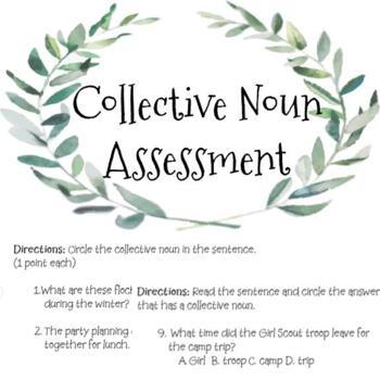 Collective Noun Assessment