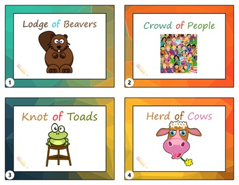 Collective Nouns Flashcards