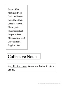 Collective Nouns Matching