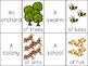 Collective Nouns: Playful Language Arts Activities for Second Grade (L.2.1.A)