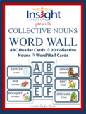 Collective Nouns Word Wall Cards